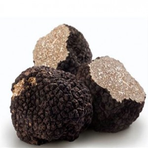 fresh-black-truffles