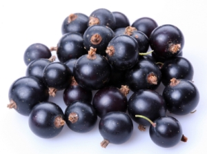 Black currants or cassis. Source: NWWildfoods.com
