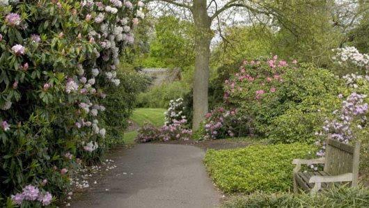 Kew Gardens, London. Source:  MrsMiniversDaughter.Blogspot.com