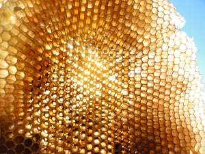 Honeycomb. Source: Robert.Maro.net