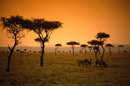 African sunset. Source: Tumblr