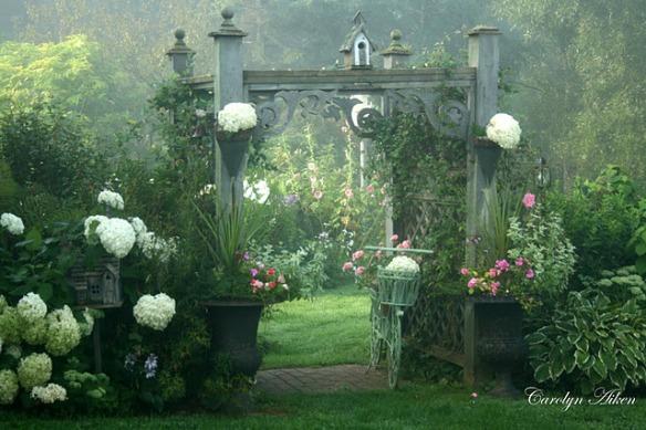 Aiken House & Gardens. Photo by Carolyn Aiken. Source: http://warrengrovegarden.blogspot.com/2011/08/misty-morn-in-garden.html