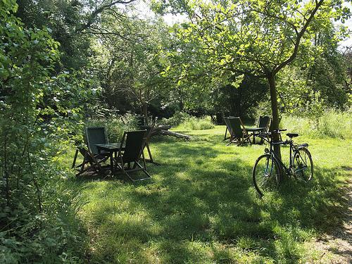 Orchard Tea Gardens at Grantchester. Source: Flickr