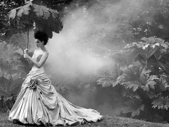 "Photo by Sheila Rock, ""Garden Mist,"" 2012. Source: Photography-now.com exhibitions.  http://photography-now.com/exhibition/details/89795"