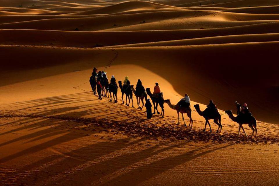 Tom Ford Amber Absolute vs Sahara Noir Archives - Kafkaesque