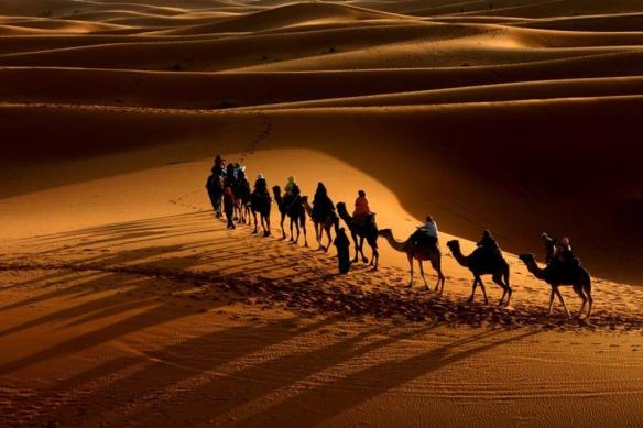 "Desert Caravan. Photo: ""Artemis."" Via Tripwiremagazine.com"