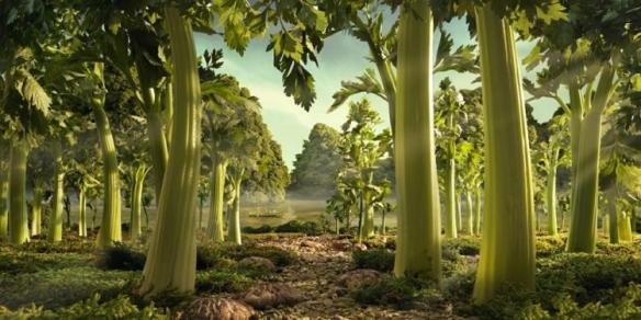 """Celery Forest."" Photo: Carl Warner. Source: npr.com"