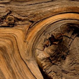 Gaiac Wood via Ozmoz.com