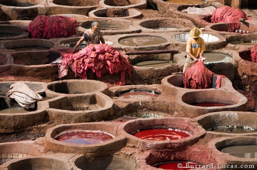 Leather Tanning in Morocco. Photo by Burrard-Lucas via http://www.burrard-lucas.com/photo/morocco/leather_tanning.html