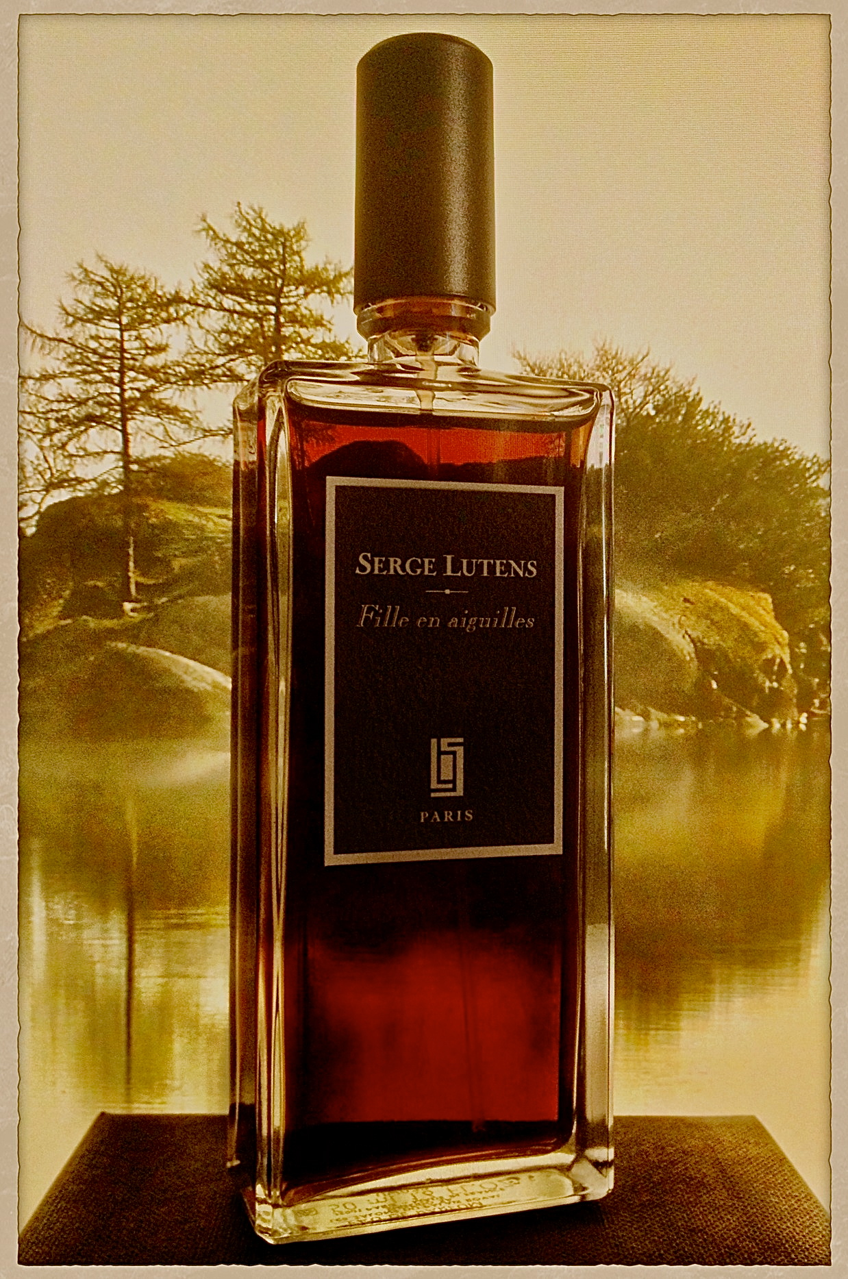 perfume review serge lutens fille en aiguilles kafkaesque. Black Bedroom Furniture Sets. Home Design Ideas