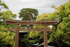 Hinoki Cypress gate at a Japanese temple. Source: es.123rf.com