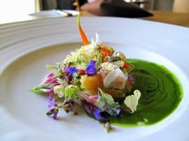 Noma salad. Source: www.tiboo.cn