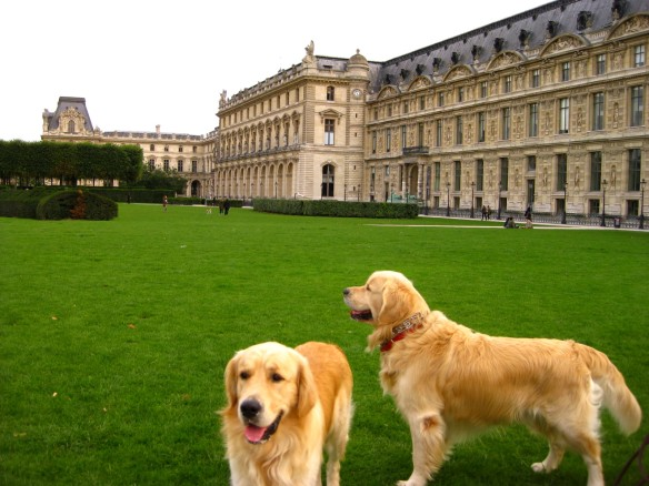 Canines at the Tuileries 2