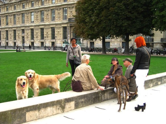Canines at the Tuileries