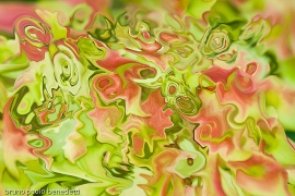 """Shades of Leaves,"" abstract photography by Bruno Paolo Benedetti. (Website link embedded withinphoto.)"