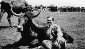 Ernest Hemingway with a bull in Spain in 1927. Source: middletontimes.com