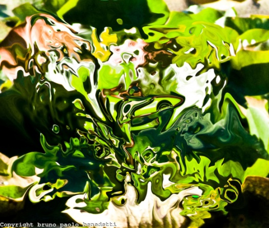 Abstract Green Fantasy by Bruno Paolo Benedetti. Source: imagesinactions.photoshelter.com