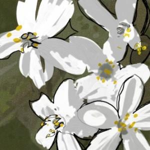 Sketch: Walter Logeman at ThousandSketches.com