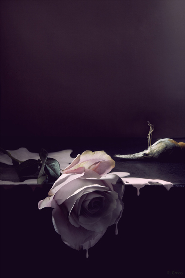 """Dom Rosa"" for Les Liquides Imaginaires"