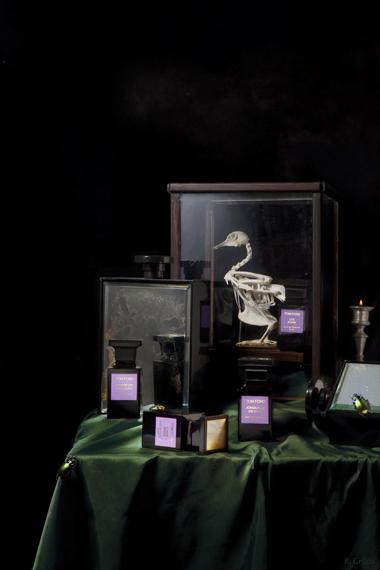 Roberto Greco Tom Ford Still Life  1